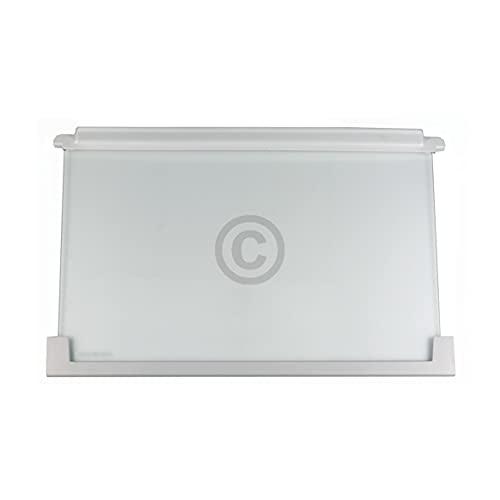 Glasplatte Regal für Kühlschrank Ersatz für AEG...