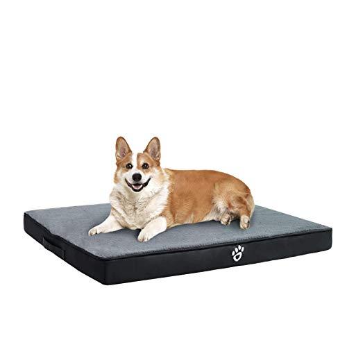 FRISTONE Orthopädisches Hundebett für Kleine...
