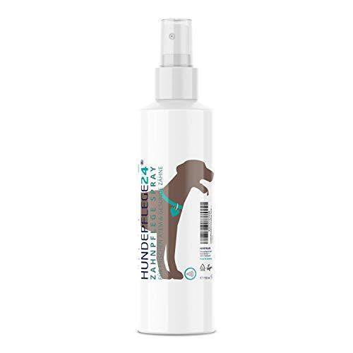 Hundepflege24 - Zahnpflege Dentalspray für Hunde...