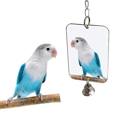 U/K Vogel Zubehör Papagei Vogel Sittich...