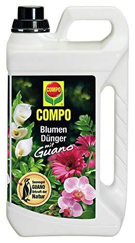 COMPO Blumendünger mit Guano für alle Zimmer-,...