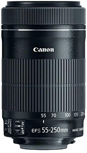 Canon EF-S 55-250mm f4-5.6 IS STM Objektiv für...