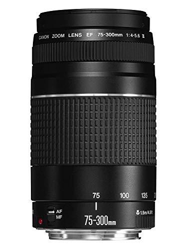 Canon EF 75-300mm F/4-5.6 III Objektiv (58 mm...