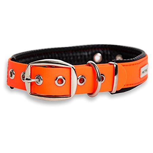 PetTec Halsband für große & kleine Hunde aus...
