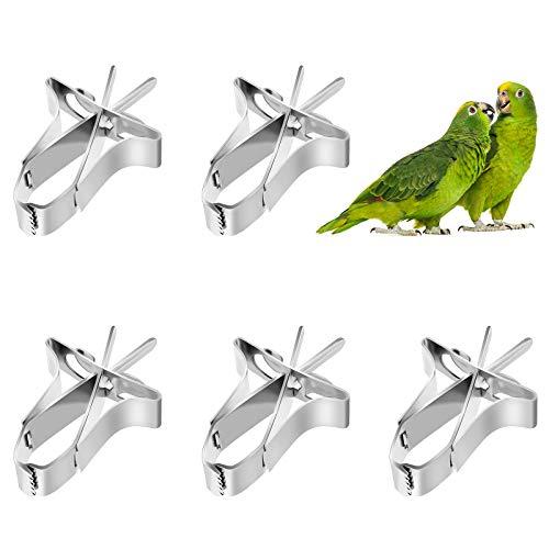 Papageien Obst Gemüse Feeder Clip 5 Stück Vögel...