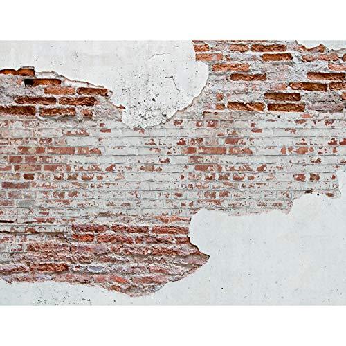 Fototapeten 396 x 280 cm Steinwand   Vlies...