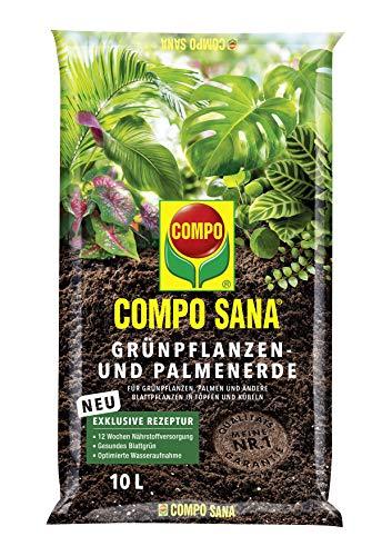 COMPO SANA Grünpflanzen- und Palmenerde mit 12...