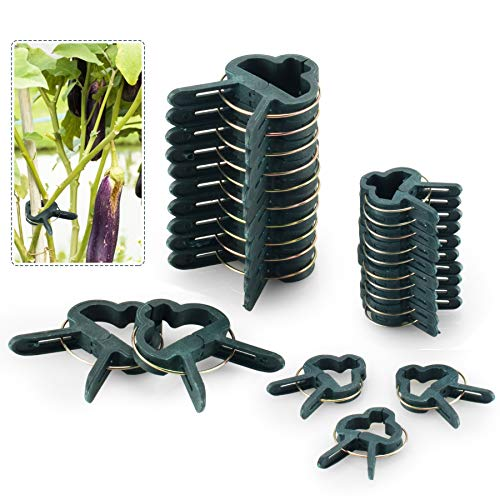 FORMIZON 80 Stück Pflanzenclips Stabile Clips...