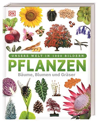 Pflanzen: Bäume, Blumen und Gräser (Unsere Welt...