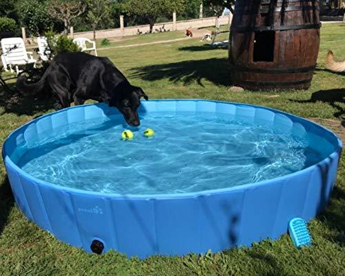 pecute Hundepool Schwimmbad Für Hunde und Katzen...