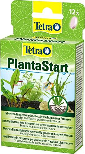 Tetra PlantaStart Düngetabletten (für prächtige...