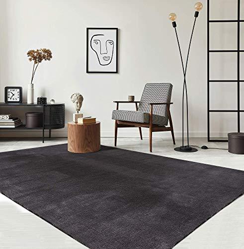 the carpet Relax Moderner Flauschiger Kurzflor...