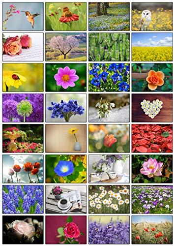 32 Grußkarten Blumen Klappkarten mit 32...
