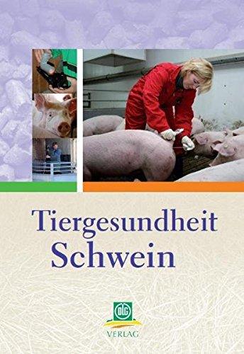 Tiergesundheit Schwein