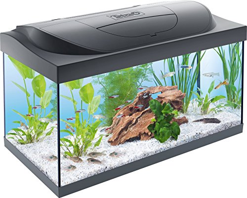 Tetra Regular Starter Line Aquarium-Komplettset...