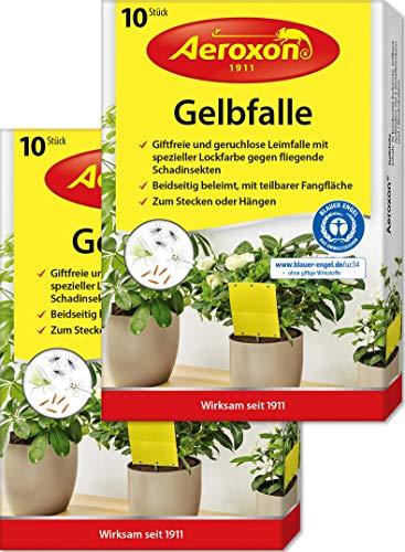 Aeroxon – Gelbfalle, Gelbtafeln, 40 kleine...