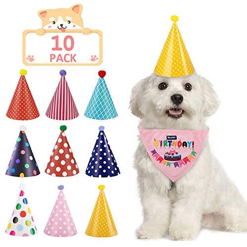 TOGETOP Hundehüte für Haustiere, Geburtstag,...