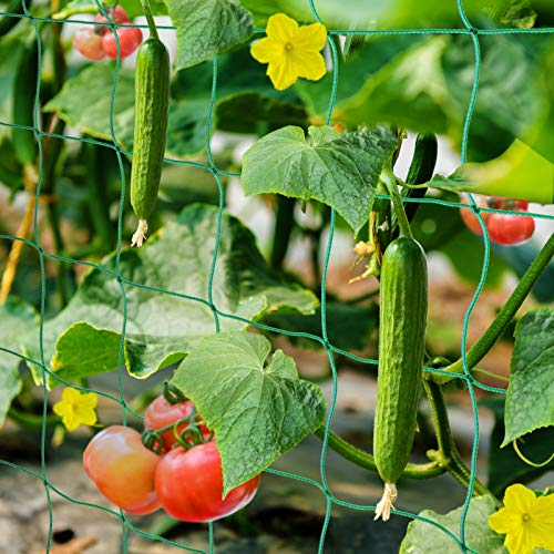HUTHIM Ranknetz Rankhilfe Garten Tomaten Gurken...