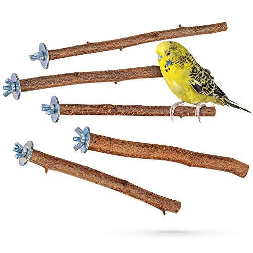 5 herrliche Natur Sitzstangen für Vögel wie...