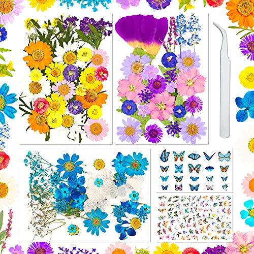 Sirecal Real Getrocknete Gepresste Blumen 202...