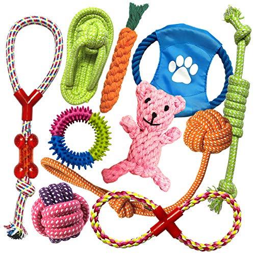 TINGERIA® Hundespielzeug für kleine &...
